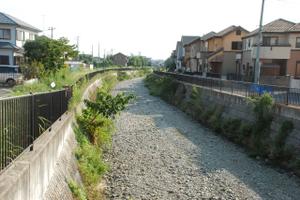 Furougawa20100905