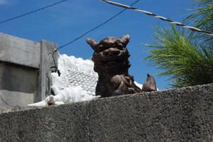 Blog_okinawa2012_132