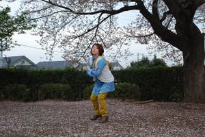 B_sakurakoshigaya_003