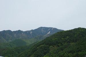 B_kobushigatake_002