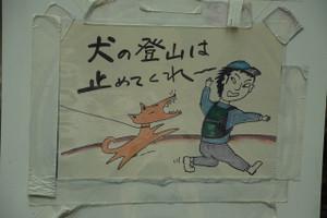 B_kobushigatake_008