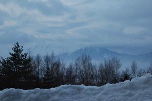 B_snowshoe_123