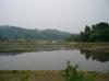 Niigata1500